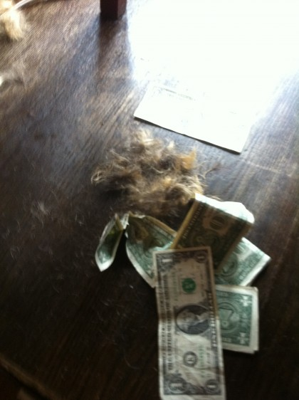 Dollars and Hair