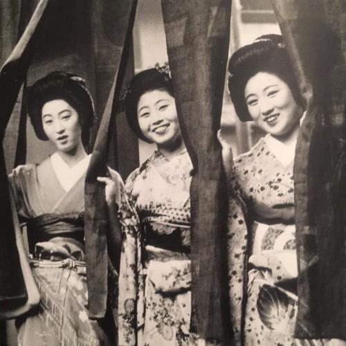 Beautiful Geishas in Kyoto, Japan.